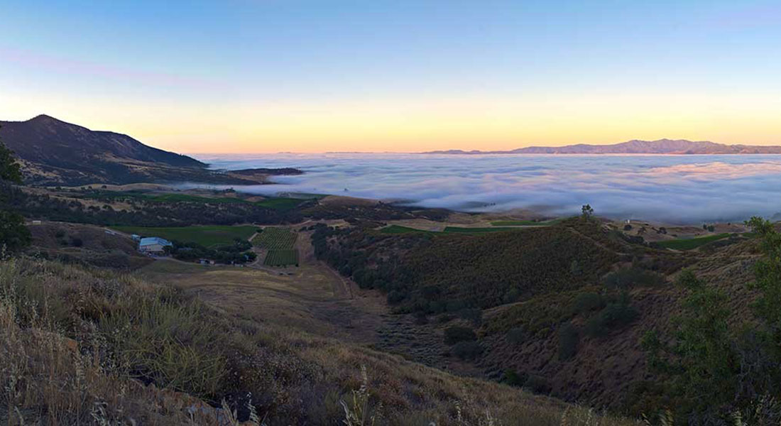 Morning Fog Over the Salinas Valley in California