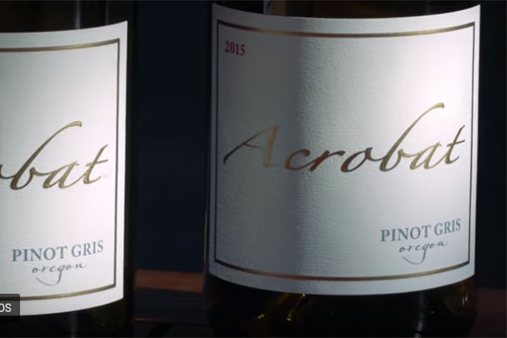 Close Up of Acrobat Pinot Gris Label