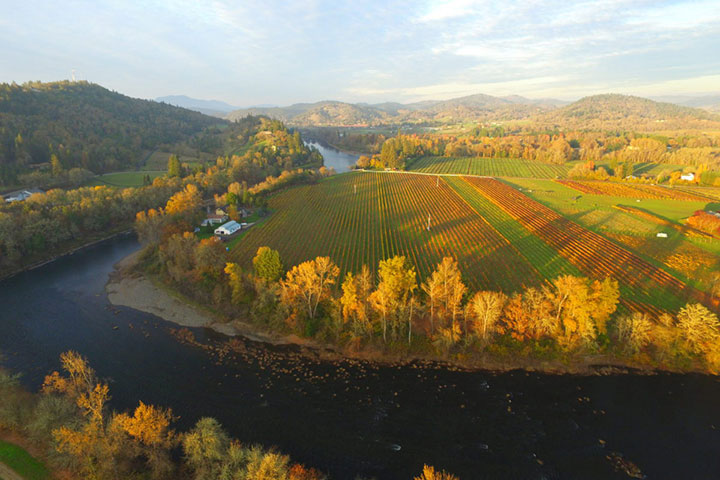 View of Southfork Vineyard
