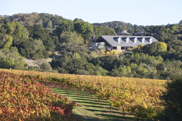 Chalk Hill Vineyards and Pavilion