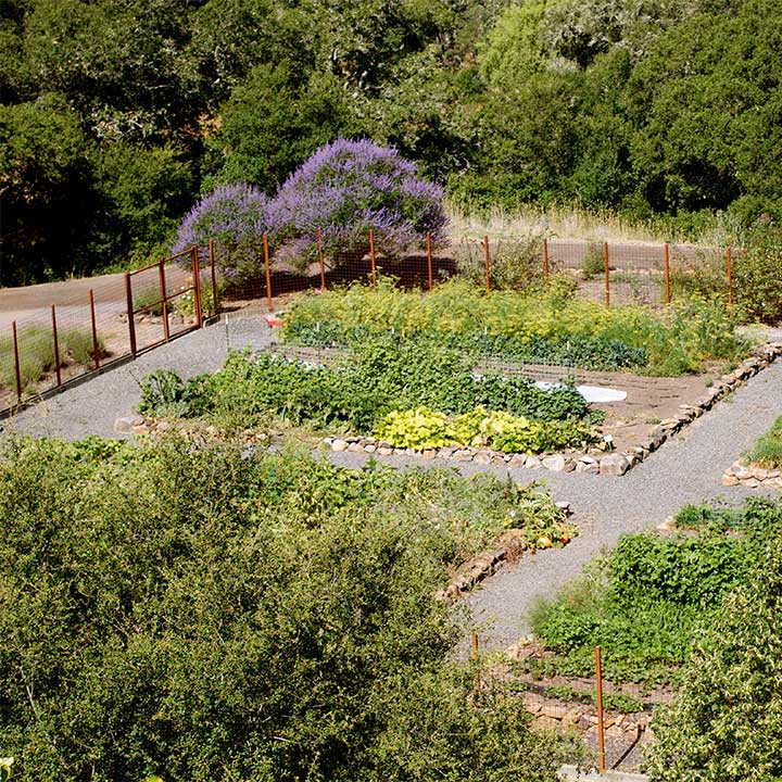 The Chalk Hill Culibary Garden as Seen from Above