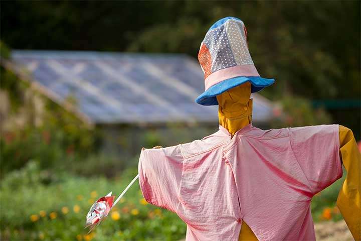 A Scarecrow on the Chalk Hill Estate