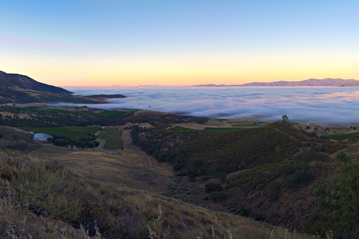 Morning Fog at Chalone over Salinas Valley