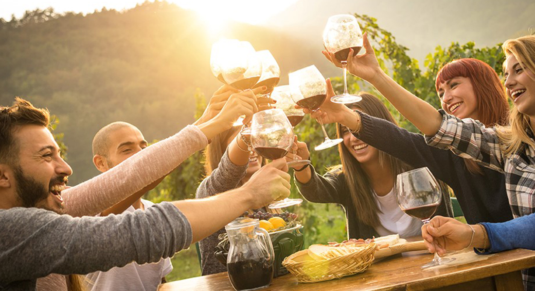 Various people cheer-zing wine glasses at a picnic table. They are surrounded by vineyards and are enjoying red wine with a charcuterie board
