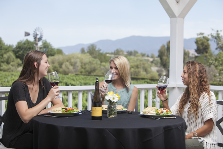 Ladies Enjoy a Sunny Lunch on the Veranda at Lincourt