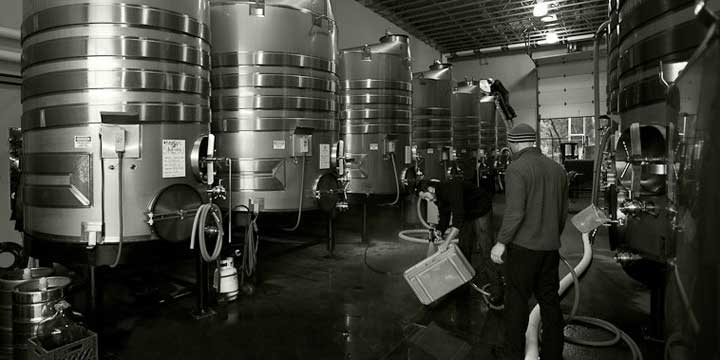 A Row of Stainless Steel Fermentation Tanks