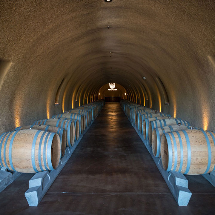 Roth Cave with Wine Barrels