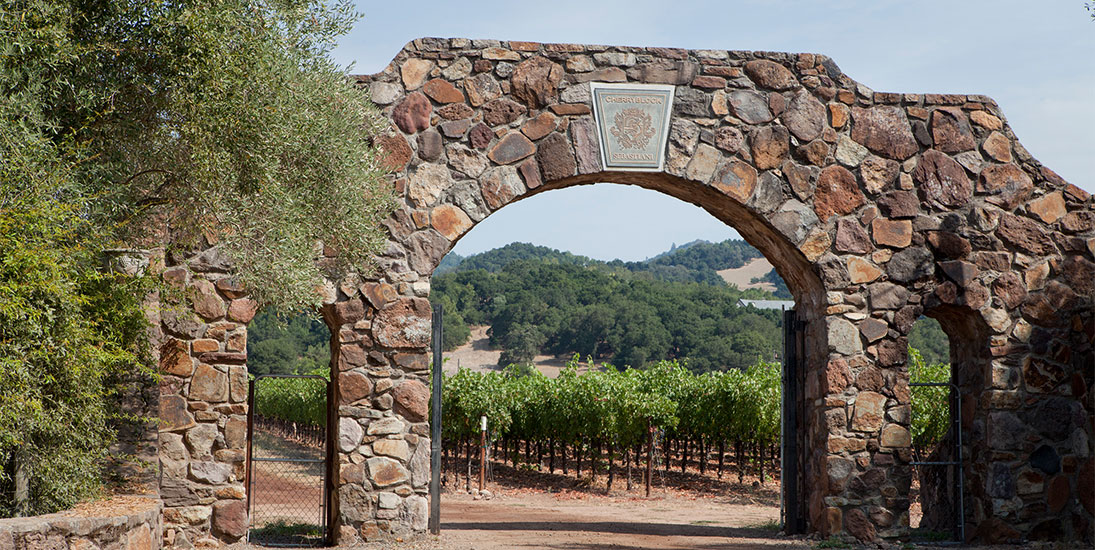 Stone Arch with Sebastiani Crest with Vineyard in the Background